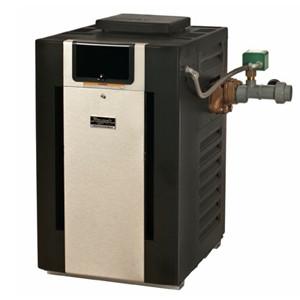 Professional Series ASME Brass Digital Heaters