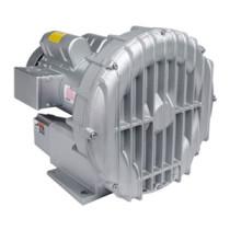 R51252 Gast Regenerative Blower